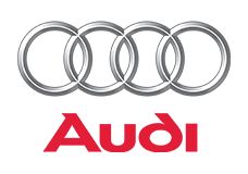 Audi with Bada Business