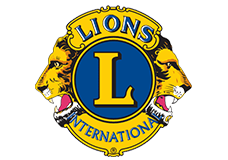 lions with Bada Business